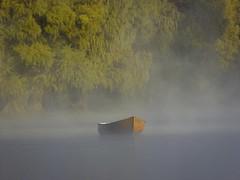 MIST. (NIKONIANO) Tags: mist surreal niebla forest nature natural water agua river pond sabino méxico mexicano tangancícuaro camécuaro mañana morning matin instantfavpic