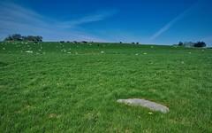 Våren er kommet (daniel6692) Tags: norge mittnorge norway vestlandet rogaland jæren hå nærbø jordet kuer landscape landskap grønt green sky nature natur beginner friluft beauty summer lovenorway
