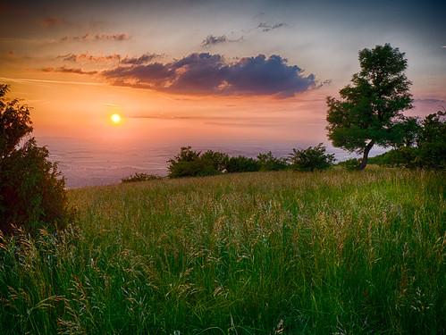 Sonnenuntergang am Hundsheimer Berg, sunset