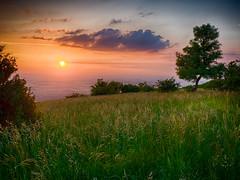 Sonnenuntergang am Hundsheimer Berg, sunset (fritz polesny) Tags: panasonic g81 hundsheimerberg sonneuntergang sunset