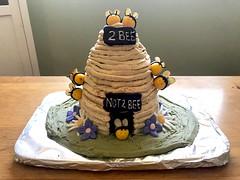 (devoutly_evasive) Tags: bee beehive hive cake birthday baking chocolate peanutbutter frosting icing bees honeybee honeybees honey fondant stingers flowers wildflowers