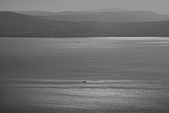 Israel (Hemo Kerem) Tags: israel a7rm2 a7rii hexanonar135mmf32 hexanon135mmf32 hexanon32135 hexanon ar 135mm manualfocus mf sony sonya7rm2 ilce7rm2 alpha lakekineret lake blackwhite bw