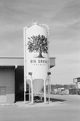 Big Grove (RockDocZ) Tags: across neopan voightlanderrangefinder voightlanderbessar2a jupiter8 jupiter50mm