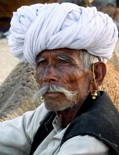 Rajasthan - Chamelier à la foire aux chameaux de Pushkar.