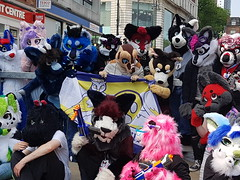 """Leeds furmeet May2018 • <a style=""""font-size:0.8em;"""" href=""""http://www.flickr.com/photos/97271265@N08/42204096412/"""" target=""""_blank"""">View on Flickr</a>"""
