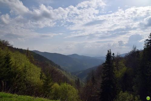 Hello, Slovakia!