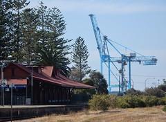 Crane and Station (mikecogh) Tags: outerharbour crane port railwaystation platform firtrees norfolkpine