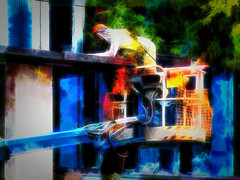 Looking For Cherries (Steve Taylor (Photography)) Tags: hydraulics cheerypicker netting art digital building construction black blue green orange white yellow man workman newzealand nz southisland canterbury christchurch cbd city leaves tree texture harness overalls helmet