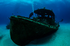 papa doc wreck (b.campbell65) Tags: animal aquatic bahamas beautiful blue caribbean colorful coral divers diving fish island marine natural nature ocean papadoc park reef scenic scuba sea tourism travel tropical underwater vacation water