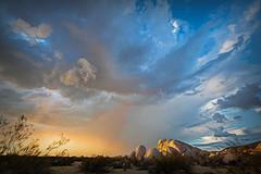 Desert Sky (East of 29) Tags: desertsky desertstorm stirruptank clouds sky highdesert mojave joshuatreenationalpark topazstudio sliderssunday