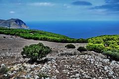 PALERMO-Sicilia - Italy (Alviero41) Tags: italy sicilia palermo montepellegrino