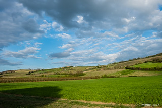The rolling hills of the Romagna's land.