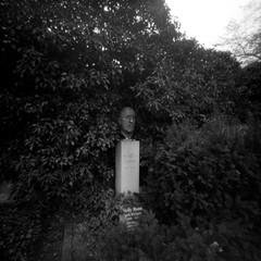 Heinrich Mann (ucn) Tags: lerouge66 cemetery friedhof berlin berggerpancro400 pinholecamera sténopé lochkamera dorotheenstätischerfriedhof filmdev:recipe=11899 adoxadoluxatm49 developer:brand=adox developer:name=adoxadoluxatm49