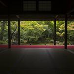 Enko-ji in Summer 夏の圓光寺 thumbnail