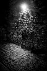 Antique mosaic, Split, Croatia (pas le matin) Tags: mosaic mosaique antique vestige travel world voyage split croatia croatie hrvatska nb bw noiretblanc blackandwhite light streetlight lampadaire wall mur canon 7d eos7d canoneos7d night nuit