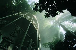 Kew, water mist in 1990s