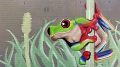 Plur / Kokerstraat - 11 mei 2018 (Ferdinand 'Ferre' Feys) Tags: gent ghent gand belgium belgique belgië streetart artdelarue graffitiart graffiti graff urbanart urbanarte arteurbano ferdinandfeys plur