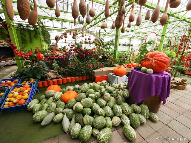 旺山休閒農場-1270003