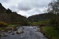 DSC_0235_00001 (Marcello Guarino) Tags: powerscourt waterfall wicklow ireland trees park nature eire ulster landscape
