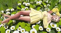 Daisy (kirstentacular) Tags: bloom cae catwa clawtooth fameshedgo kaithleens maitreya reign springflair wasabi yummy