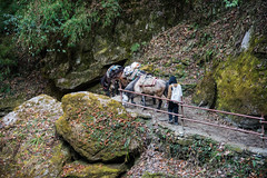 Long journey (rfabregat) Tags: nepal nepalese annapurna annapurnacircuit asia travel travelphotography trekking trekkers adventure mountains