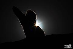Silhouette (morbidtibor) Tags: africa northafrica morocco desert atlas atlasmountains toubkal trekking hiking silhouette