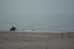 Noordzee (wode_) Tags: belgien belgium belgië belgique vlaanderen flanders noordzee sea coast kust