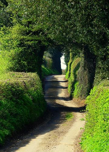 Waterend Lane