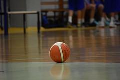 Play basket (paola perrone) Tags: paolaperrone basket ball pallonedabasket palestra game gioco