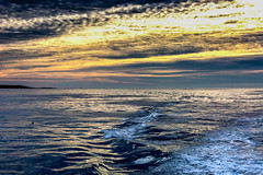6933  Wake Watching (foxxyg2) Tags: water light waves sea ocean pacific sky sunset dusk california monterey montereybay