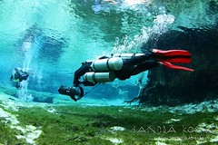 IMG_0013 (2) (SantaFeSandy) Tags: ginniesprings ginnie cave cavern canon camera catfish colors caves chris hartmann chad minter graham murray photography sandrakosterphotography sandrakosterphotographycom sandykoster sandy sandra scuba santafesandysandrakosterphotographycom scubadiving scubadivers cavedivers grahammurray chadminter chrishartmann sandrakoster diverite diveritextredfins dpv diverspropulsionvehicle swimmers