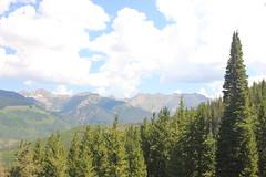 IMG_6105 (avsfan1321) Tags: colorado unitedstates unitedstatesofamerica usa vail rockymountains midvail skiresort mountains landscape nature mountain