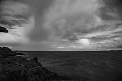 Lauriston and Crammond with Alastair April 2018 (119 of 126) (Philip Gillespie) Tags: crammond lauriston castle keep gardens park green blue red yellow orange colour color mono monochrome black white sea seascape landscape sky clouds drama dramatic walkway path flowers leaves trees april spring defences canon 5dsr people rust metal grafitti man dog petals bluebells dafodils holly blossom pond forth water wet rain sun reflections architecture mirrors gold japan garden sunlight scotland