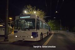 Trolleybus NAW BT-25 n°774 en service sur la ligne 6. Copyright by : Gaetano Lotrecchiano (gaetanolotrecchiano1) Tags: trolleybus naw convois remorque tl lausanne autobus man lions city service de subsitution pour le leb transports public 774 787 636 ligne 6 bus routes bleu blanc soleil nuit jour rétrobus