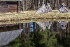 Vintage, rustic house in spring,Reflections Of Trees In Water (AudioClassic) Tags: reflections water estonia rural house old farm wood wooden green tallinn grass roof nature architecture historic traditional museum village tree open fence building landscape historical countryside home history ancient air baltic outdoor trees wall tourist culture europe medieval travel autumn barn branch yellow fall estonian construction mist vivid rustic ethnic antique season leaf day exterior window ageless vintage european nostalgic moss facade glass windmill national woodenbucket vegetables roccaalmare farmhouse