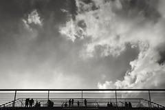 Dockland (Perspektivenwechsel / Fotografie Sabine Werfel) Tags: hamburg dogland silhouette gegenlicht monochrom