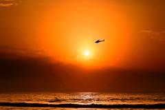 Flying over the sun - Tel-Aviv beach - Follow me on Instagram:  @lior_leibler22 (Lior. L) Tags: flyingoverthesuntelavivbeach flyingover sun telaviv beach helicopter telavivbeach israel sea sunset