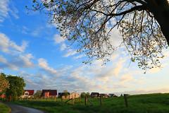 Ense Ortsteil Ruhne (Rolf Pahnhenrich) Tags: ortschaft ruhne westfalen häuser ortsteil architektur himmel wolken wolkenhimmel abend wiese deutschland siedlung ense rolfpahnhenrich