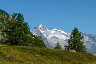 Aletschhorn (4.193 m)