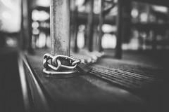 Chained (Monika Schiefer) Tags: black white hafen harbour rhein river schloss kette chain lock locked stühle chairs holz metall 2018 nikon d750 35mm lens metal düsseldorf medienhafen abgeschlossen lonely einsam alleine wood ambient light tristesse