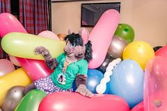 Balloon Party - March-31-2018-2035'54-IMG_8112 (SGT.Tibbs) Tags: 31032018 balloonparty bristolfilton convention furries furry furryculture fursuits hobby holidayinn justfurtheweekend lgbtqia people subculture