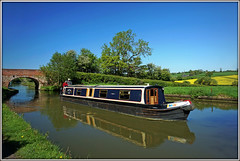 LIBERTY BELLE (Jason 87030) Tags: libertybelle nantwich leisure narrowboat blue sky rape field crops water towpath sony ilce alpha a6000 nex lens cut canal cool may 2018 reflection northants northamptonshire waterlanebridgeno9 local jasmine morning nice light camera shot shoot welton buckby wharf long bluesky color colour boats craft vessel