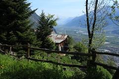 Mayen Lotton (bulbocode909) Tags: valais suisse mayenlotton montagnes nature forêts arbres paysages printemps chalets barrières vert bleu valléedurhône