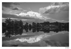 Lake reflection (Aljaž Anžič Tuna) Tags: lake reflection ljubljana šiška barje bog pond fishpond koseze clouds cloudysky sky spring trees photo365 project365 panorama nature onephotoaday onceaday 365 35mm 365challenge 365project nikond800 nikkor nice naturallight nikon f28 slovenia bw blackandwhite black blackwhite beautiful white nikkor28mmf28 nikkor28mm