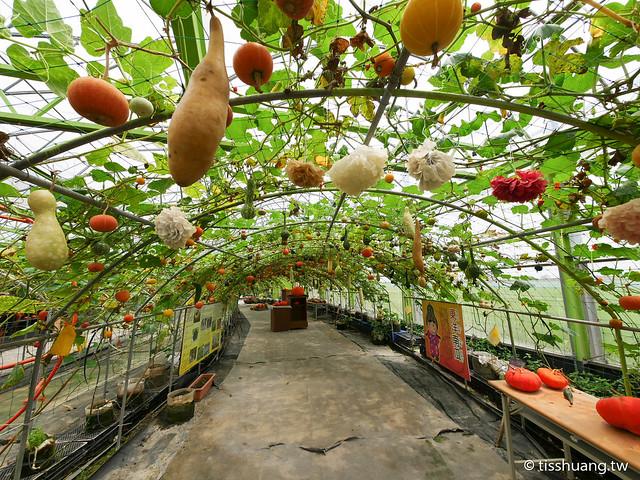 旺山休閒農場-1270065