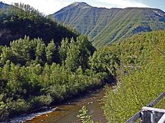 18050718753valtrebbia (coundown) Tags: gita tour statale stradastatale 45 ss45 valtrebbia trebbia natura boschi verde fiume