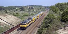 Op weg naar Max Verstappen (Tim Boric) Tags: zandvoort duinen dunes trein train zug bahn railway spoorwegen ns ddm1