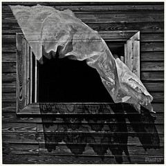 window and wind (pavelfadeevv) Tags: window wind photo photography mood bw still art color monochrome blackandwhite stilllife beautiful beauty wooden vintage background light drink food fruit berries glass cup flowers nature coffee morning animals landscape