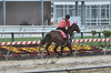 2018-05-13 (30) r4 outrider - Kaymarie (JLeeFleenor) Tags: photos photography md maryland marylandracing pimlico marylandhorseracing leadrider leadriders horsepeople trackpeople