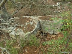 Крим, Таврські могильники на горі Кішка InterNetri Ukraine 2009 131